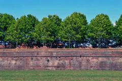 4 TC-11 GF-31-Lucca